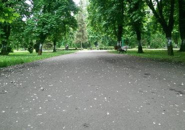 Park Ludowy w Lublinie | fot. spottedlublin.pl