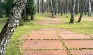 Polski Cmentarz Wojenny w Katyniu – zarys masowych mogił (2005)