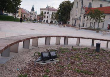 Plac Litewski w Lublinie. Tu rósł kiedyś Baobab