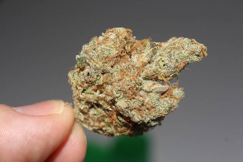 marihuana narkotyki