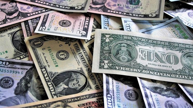 pieniądze dolary waluta