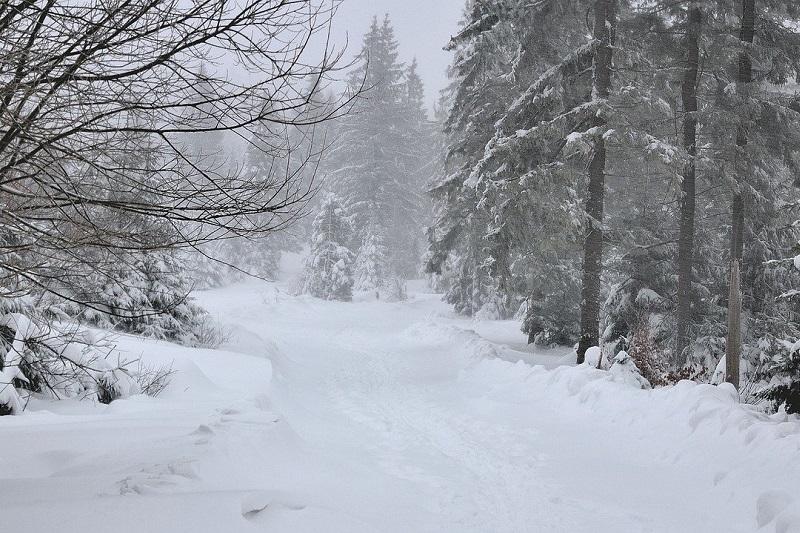 śnieg śnieżyca zaspa śnieżna