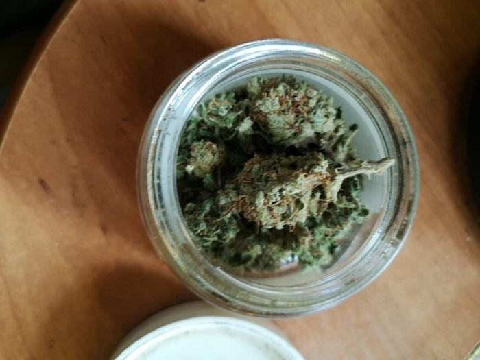 Marihuana w domu 35-latki | fot. KMP Lublin