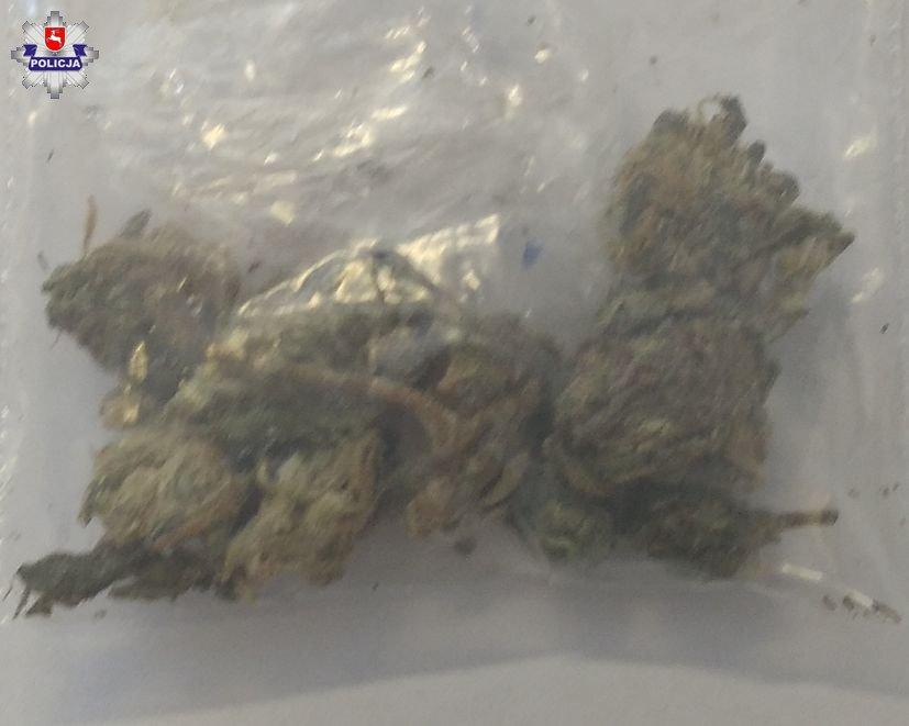 Nastolatkowie mieli przy sobie marihuanę   fot. KPP Łęczna