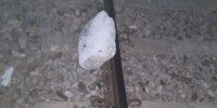 Nastolatkowie położyli betonowy bloczek na szynie