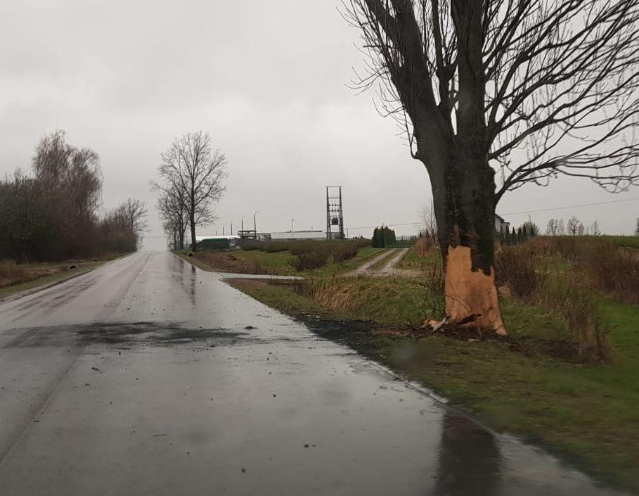 Renault uderzył w drzewo i zapalił się w Końskowoli