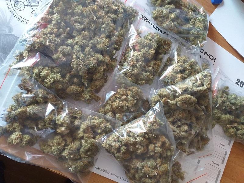 Susz marihuany w domu 28-latka