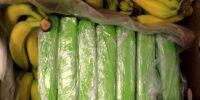 160 kg kokainy w bananach sprzedanych do znanej sieci sklepów