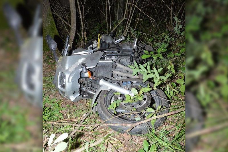 Motocyklista zderzył się z łosiem
