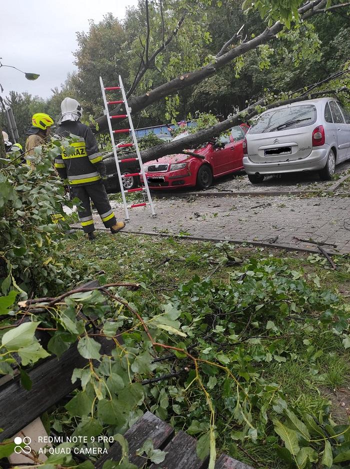 Drzewo upadło na zaparkowane samochody na ul. Szmaragdowej