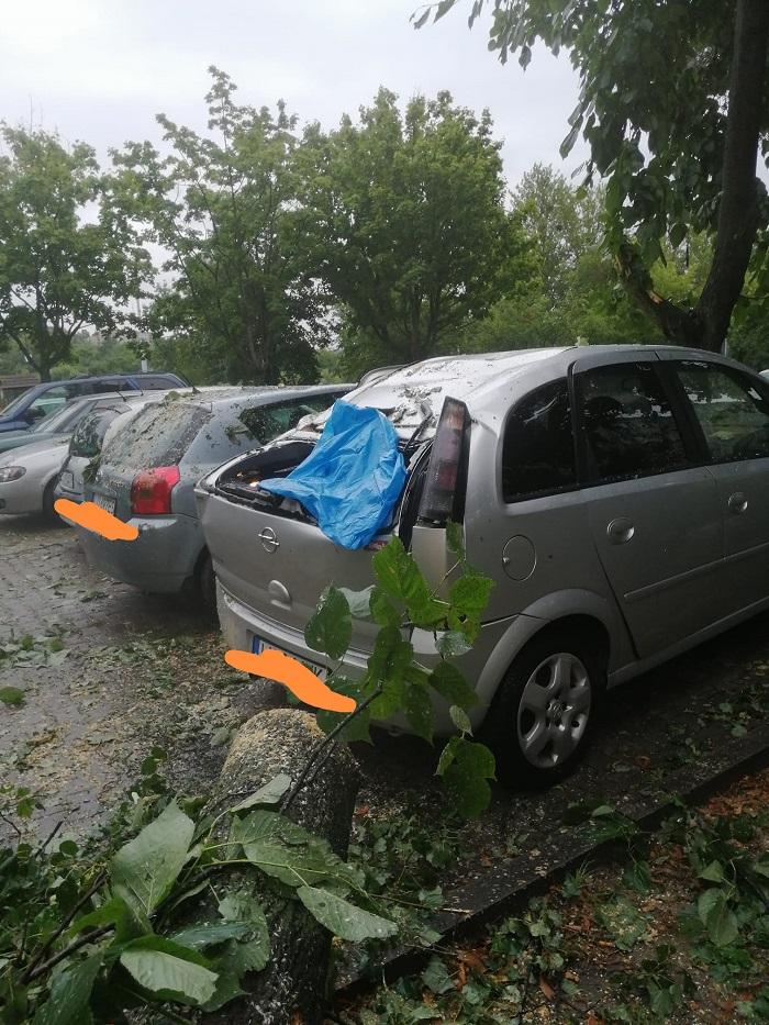 Drzewo upadło na zaparkowane samochody na LSM
