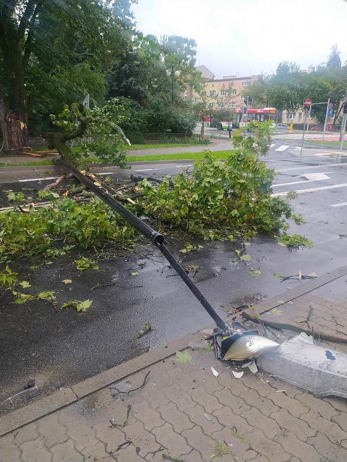 Latarnia uszkodzona przez powalone drzewo
