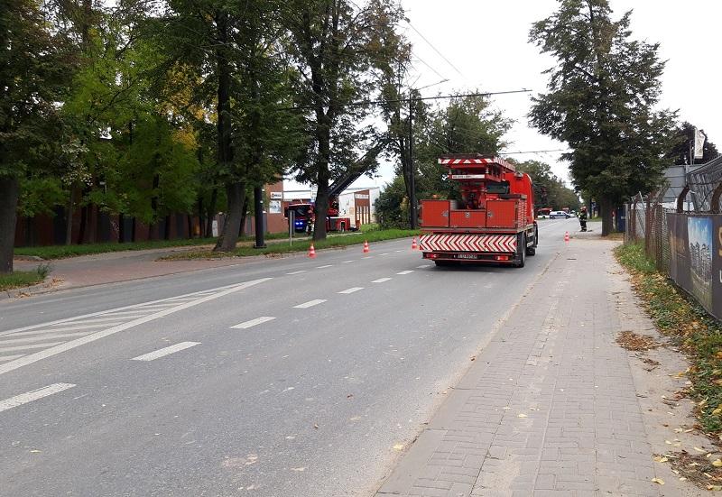 Przycinanie drzewa przy ul. Zemborzyckiej