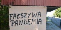 """Napis """"Fałszywa pandemia"""" na przystanku"""